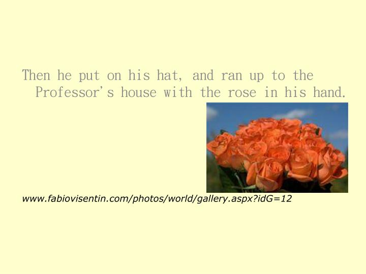 Then he put on his hat, and ran up to the Professor's house with the rose in his hand.