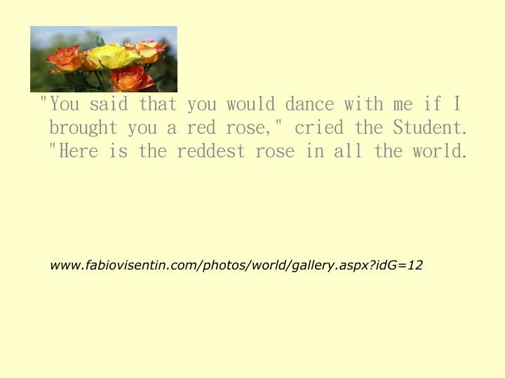 """""""You said that you would dance with me if I brought you a red rose,"""" cried the Student.  """"Here is the reddest rose in all the world."""