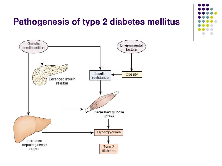 the root cause of diabetes mellitus and its treatment The real cause of diabetes root cause of type 2 diabetes mellitus,we offer products that help you solve your health problems⭐️⭐️⭐️⭐️⭐️ help today.