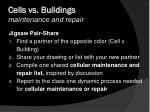 cells vs buildings maintenance and repair1