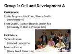 group 1 cell and development a