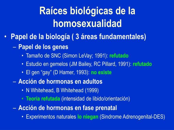 Raíces biológicas de la homosexualidad