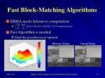 fast block matching algorithms