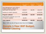 sample 1 year shp budget master leasing