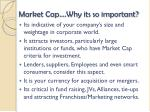 market cap why its so important