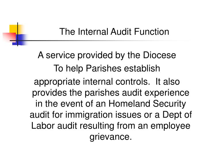 The internal audit function