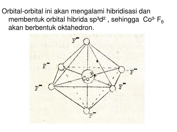 Orbital-orbital ini akan mengalami hibridisasi dan membentuk orbital hibrida sp