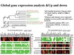 g lobal gene expression analysis up and down