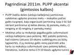 pagrindiniai 2011m pupp akcentai gimtosios kalbos