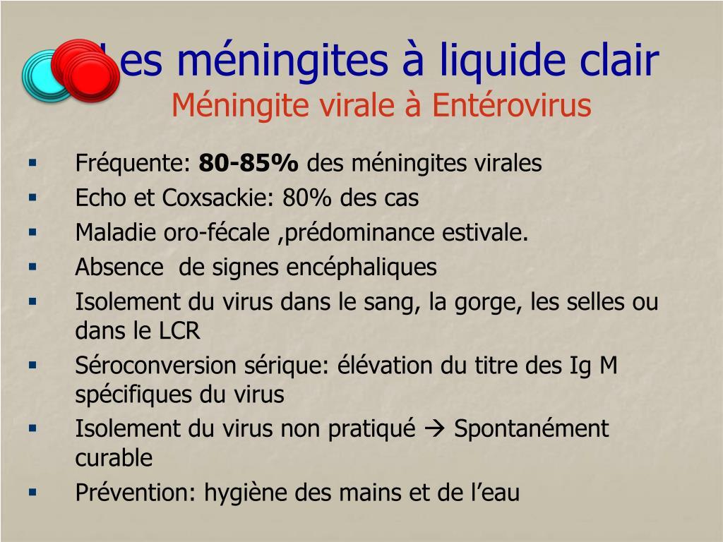 PPT - Les méningites à liquide clair PowerPoint Presentation - ID ...