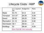 lifecycle costs amp