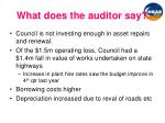 what does the auditor say1