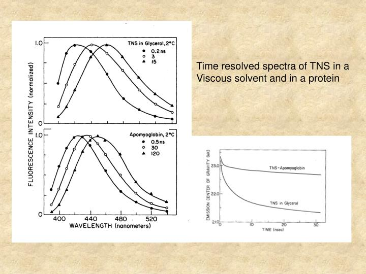 Time resolved spectra of TNS in a