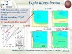 light higgs boson
