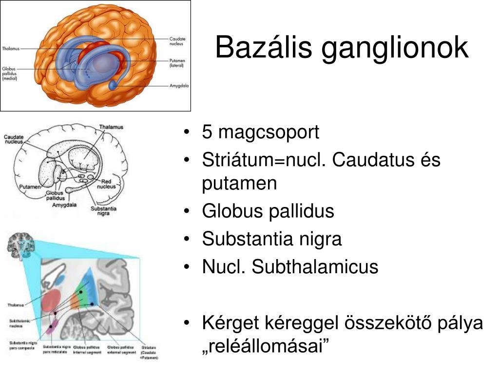 Ganglion eltávolítás