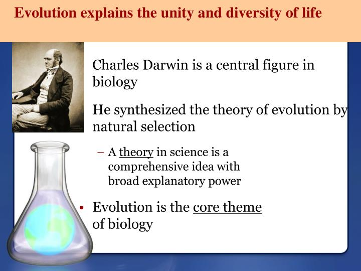 Evolution explains the unity and diversity of life