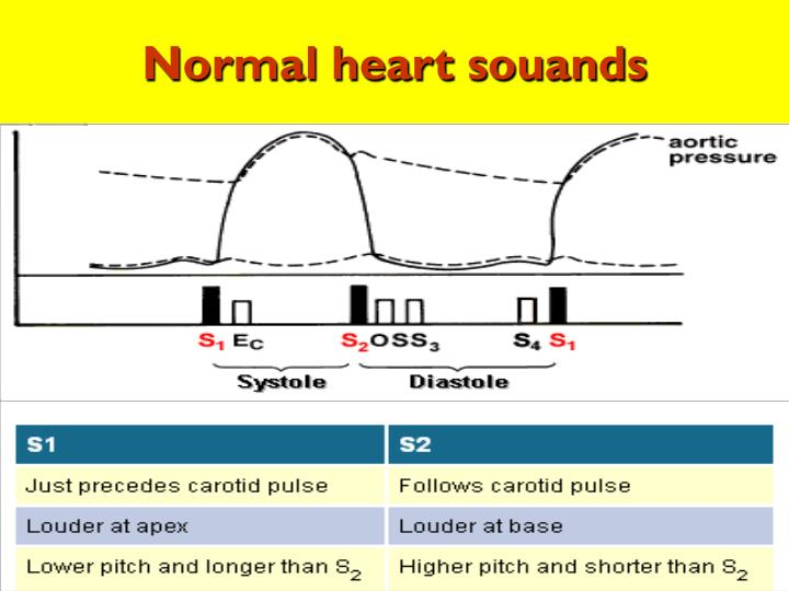 Normal heart souands