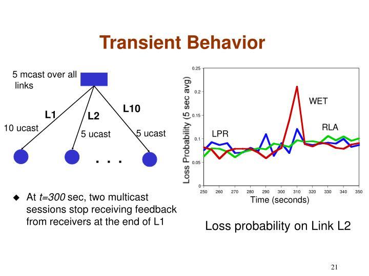 Transient Behavior