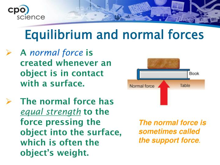Equilibrium and normal forces