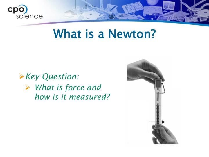 What is a newton