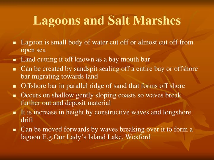 Lagoons and Salt Marshes