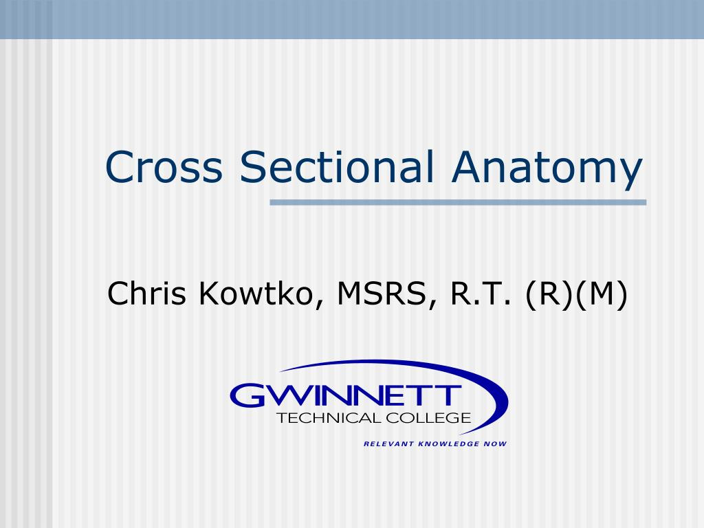 PPT - Cross Sectional Anatomy PowerPoint Presentation - ID