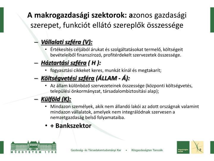 A makrogazdasági szektorok: a