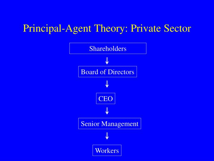 Principal-Agent Theory: Private Sector