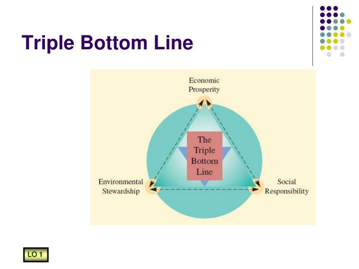 triple bottom line theory Measuring organizational performance: beyond the triple bottom line graham hubbard adelaide graduate school of business  stakeholder theory: the triple bottom line.