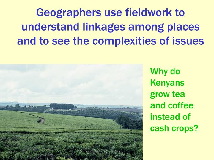 Why do Kenyans grow tea and coffee instead of cash crops?