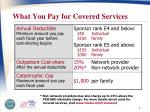 what you pay for covered services