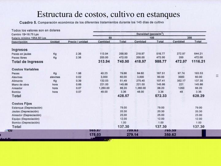 Estructura de costos, cultivo en estanques