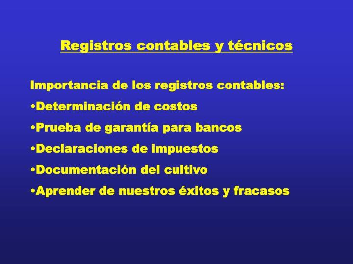 Registros contables y técnicos