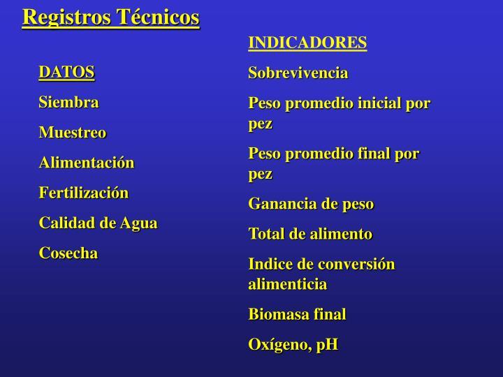 Registros Técnicos