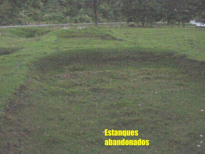 Estanques abandonados