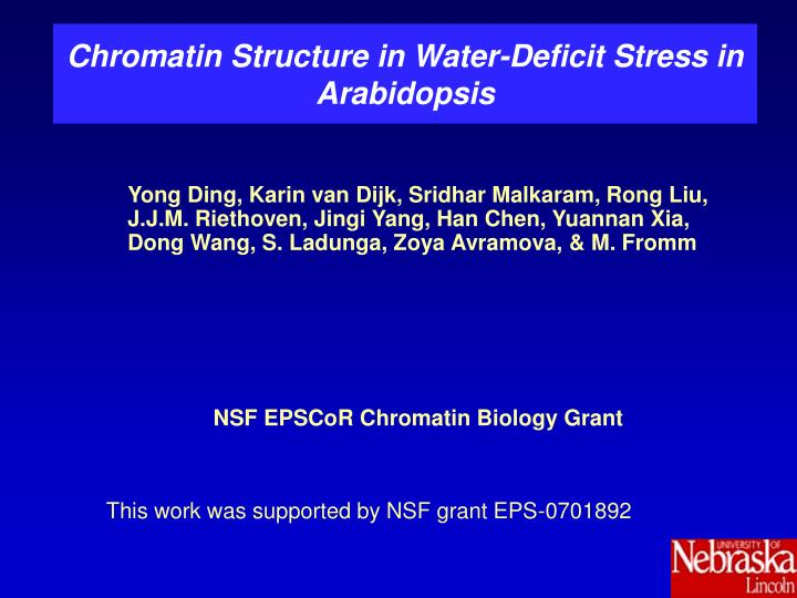 chromatin structure in water deficit stress in arabidopsis n.