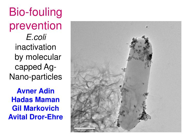 Bio-fouling prevention