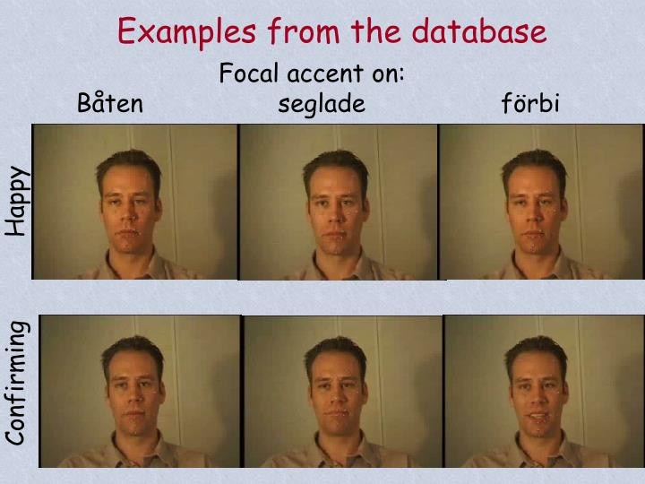 Examples from the database