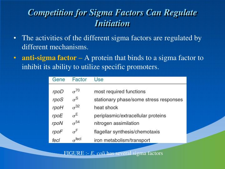 Competition for Sigma Factors Can Regulate Initiation