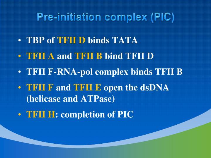 Pre-initiation complex (PIC)