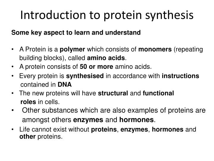 introduction to protein synthesis n.