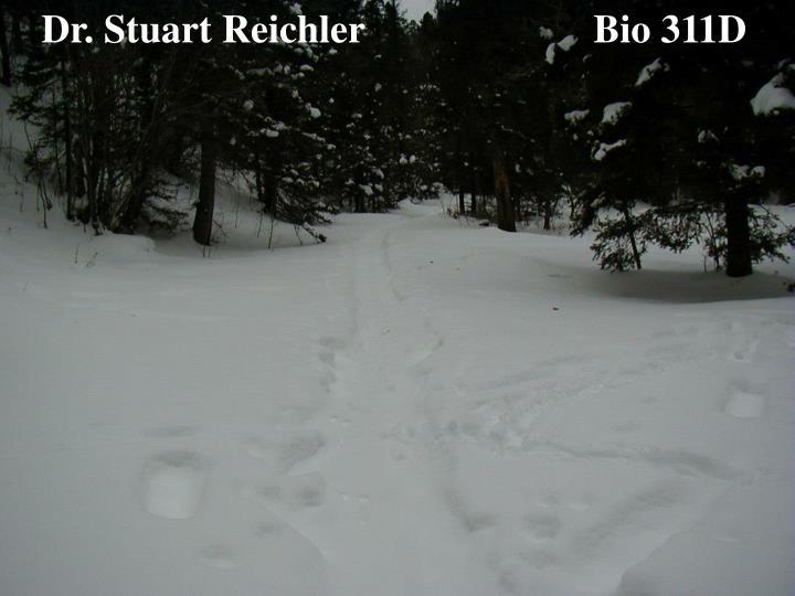 Dr. Stuart Reichler                       Bio 311D