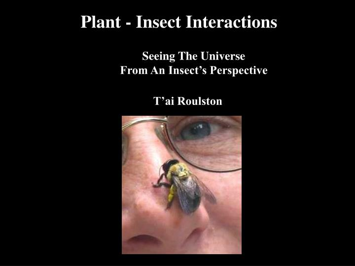 Plant - Insect Interactions