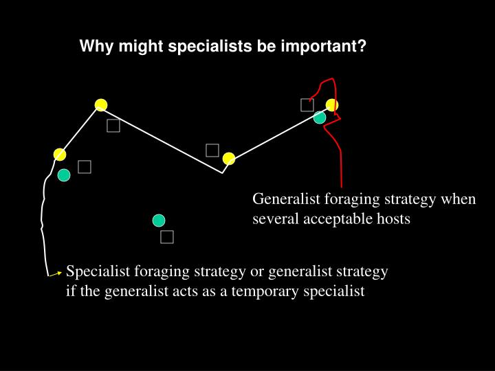 Why might specialists be important?