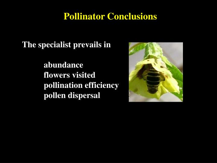 Pollinator Conclusions