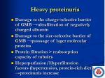 heavy proteinuria