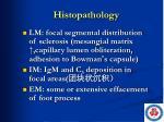 histopathology3