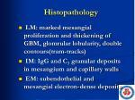 histopathology4