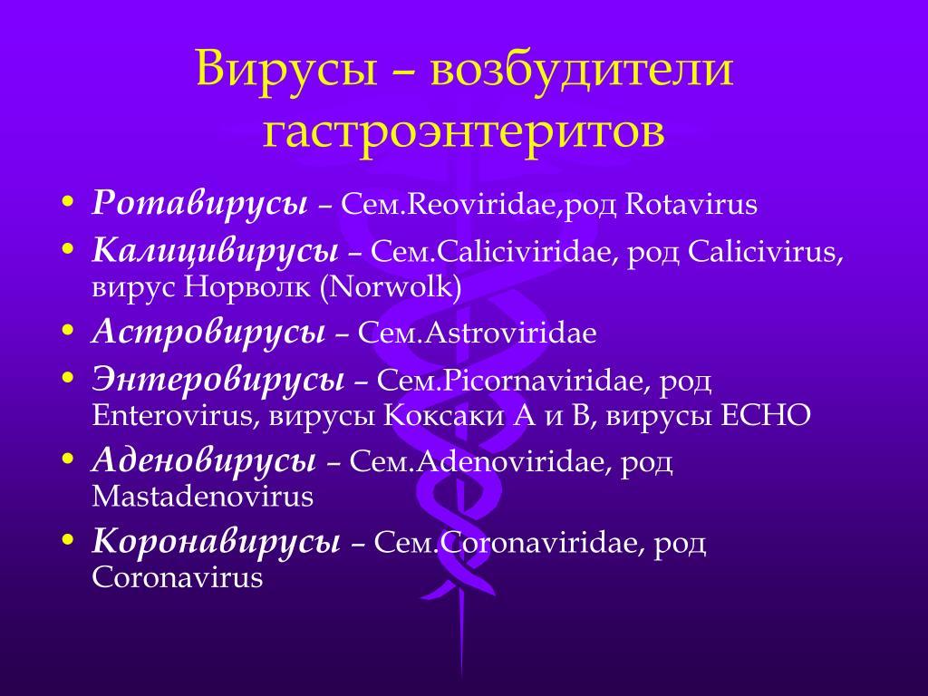 калицивирусы коронавирусы