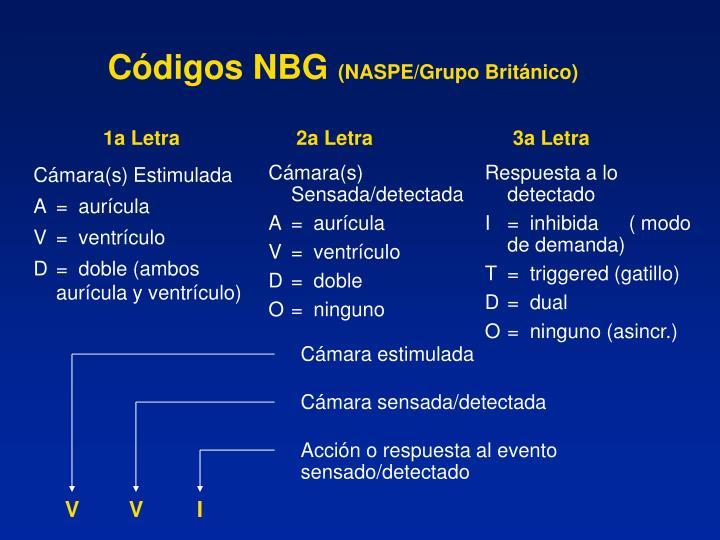 Códigos NBG